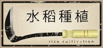 Tarjeta en el cultivo del arroz Fotografía de archivo libre de regalías