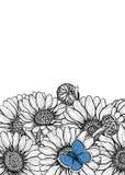 Tarjeta exhausta de las flores de la margarita de la mano ilustración del vector