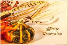 Tarjeta feliz de la acción de gracias Foto de archivo libre de regalías