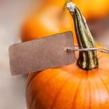 Tarjeta feliz del Día de Acción de Gracias con las calabazas y el papel anaranjados p Fotos de archivo libres de regalías