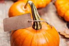 Tarjeta feliz del Día de Acción de Gracias con las calabazas y el papel anaranjados p Imagen de archivo libre de regalías