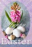 Tarjeta feliz del día de fiesta de Pascua con el jacinto y los huevos de Pascua rosados Fondo colorido de Pascua Imagen de archivo libre de regalías