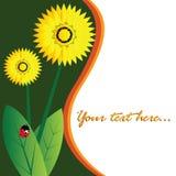 Tarjeta floral Imagen de archivo libre de regalías