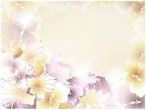 Tarjeta floral Imagenes de archivo