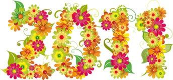 tarjeta floral 2011 Foto de archivo libre de regalías