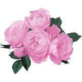 Tarjeta floral Fotos de archivo