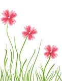 Tarjeta floral con el lugar para el texto Foto de archivo libre de regalías