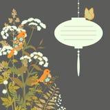 Tarjeta floral con la linterna de papel Fotos de archivo