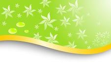Tarjeta floral con pocas gotas del agua Ilustración del Vector
