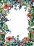 Tarjeta floral de la acuarela con el cactus Ejemplo pintado a mano con la Opuntia floreciente, succulent, bayas, plumas Foto de archivo libre de regalías