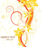 Tarjeta floral de la belleza Imágenes de archivo libres de regalías
