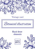Tarjeta floral del vintage con las flores del jardín fondo romántico Ilustración del vector Imagenes de archivo