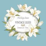 Tarjeta floral del vintage con un marco de los lirios blancos en el fondo azul Imagen de archivo