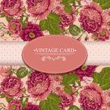 Tarjeta floral del vintage de la elegancia con las rosas Imagen de archivo libre de regalías