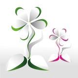 Tarjeta floral en un fondo gris Imagen de archivo libre de regalías