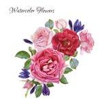 Tarjeta floral Ramo de rosas y de azafranes de la acuarela Foto de archivo libre de regalías