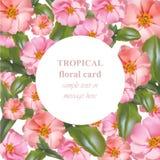 Tarjeta floral tropical de la belleza de la acuarela Flores del trópico del rosa del vintage del vector Foto de archivo libre de regalías