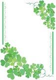 Tarjeta floral verde y blanca Foto de archivo libre de regalías