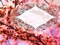 Tarjeta hermosa con el campo adornado vacío del texto Imagenes de archivo