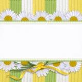 Tarjeta hermosa con la margarita stock de ilustración