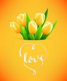Tarjeta hermosa con las flores del tulipán Fotografía de archivo libre de regalías