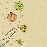 Tarjeta hermosa de la flor Fotos de archivo libres de regalías