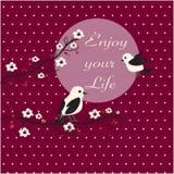 Tarjeta linda de los pájaros Foto de archivo