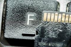 Tarjeta micro negra del sd con los contactos del oro en la llave con la letra F fotos de archivo