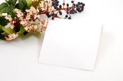Tarjeta para el amor Fotografía de archivo libre de regalías