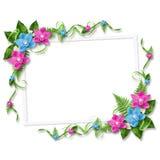 Tarjeta para la invitación con las orquídeas azules y rosadas Fotografía de archivo