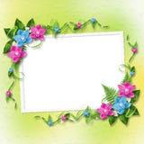 Tarjeta para la invitación con las orquídeas azules y rosadas Imagenes de archivo
