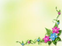 Tarjeta para la invitación con las orquídeas azules y rosadas Fotografía de archivo libre de regalías