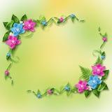 Tarjeta para la invitación con las orquídeas azules y rosadas Fotos de archivo