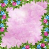 Tarjeta para la invitación o la enhorabuena con las orquídeas Foto de archivo libre de regalías