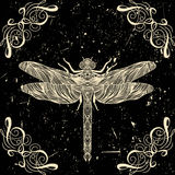 Tarjeta retra con la libélula y elemento decorativo caligráfico en fondo del grunge Imagenes de archivo