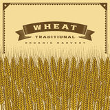 Tarjeta retra de la cosecha del trigo libre illustration