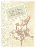 Tarjeta romántica con los tagetes Foto de archivo libre de regalías