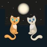 Tarjeta romántica, cayendo en gatos de la historieta del amor, tejado de la casa, noche, luna, estrellas, vector Fotos de archivo libres de regalías