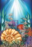 Tarjeta subacuática con la cáscara y los pescados tropicales Imagen de archivo