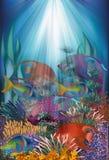 Tarjeta subacuática con los pescados tropicales, vector Fotografía de archivo