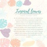 Tarjeta tropical dibujada mano de las hojas de palma Foto de archivo