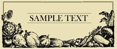Tarjeta vegetal de la muestra Fotos de archivo libres de regalías