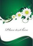 Tarjeta verde de la invitación Fotos de archivo libres de regalías