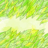 Tarjeta verde inconsútil dibujada mano de la invitación Fotos de archivo libres de regalías