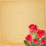 Tarjeta vieja del vintage con la rosa hermosa del rojo en el fondo de papel Imagen de archivo libre de regalías