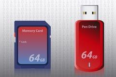 Tarjeta y Pen Drive de memoria ilustración del vector
