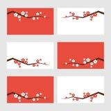 Tarjetas de felicitación del flor de Sakura stock de ilustración