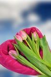 Tarjetas de la tarjeta del día de San Valentín con los tulipanes Imagenes de archivo