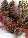 Tarjetas de Navidad con las bayas y los pinos del cono Imágenes de archivo libres de regalías