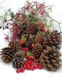Tarjetas de Navidad con las bayas y los pinos del cono Imagenes de archivo